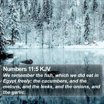 Numbers 11:5 KJV Bible Verse Image