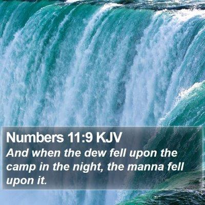 Numbers 11:9 KJV Bible Verse Image