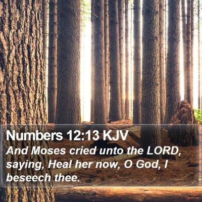 Numbers 12:13 KJV Bible Verse Image