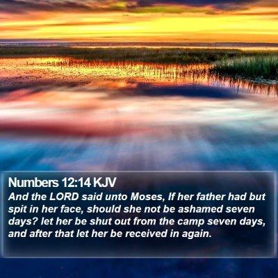 Numbers 12:14 KJV Bible Verse Image