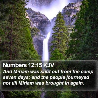 Numbers 12:15 KJV Bible Verse Image