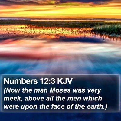 Numbers 12:3 KJV Bible Verse Image