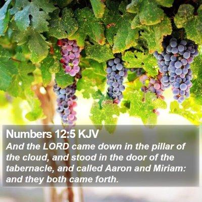 Numbers 12:5 KJV Bible Verse Image