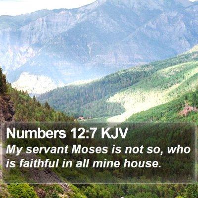 Numbers 12:7 KJV Bible Verse Image