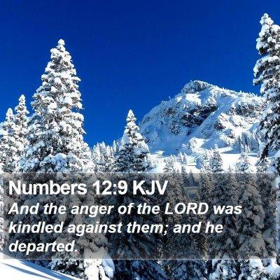Numbers 12:9 KJV Bible Verse Image