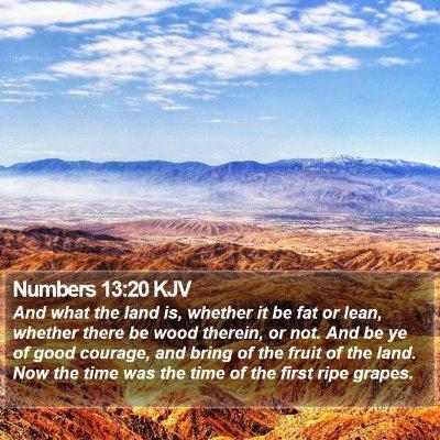 Numbers 13:20 KJV Bible Verse Image