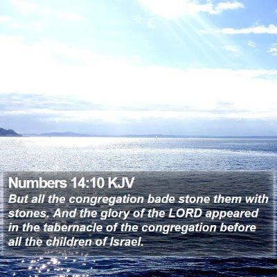 Numbers 14:10 KJV Bible Verse Image