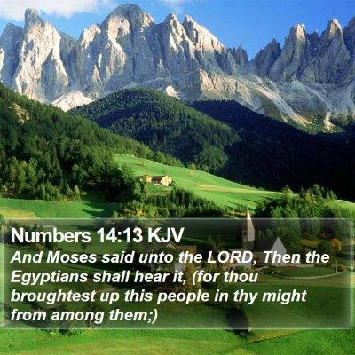 Numbers 14:13 KJV Bible Verse Image