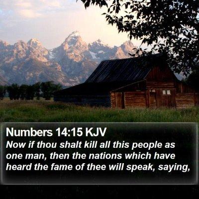 Numbers 14:15 KJV Bible Verse Image