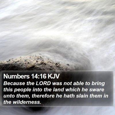 Numbers 14:16 KJV Bible Verse Image