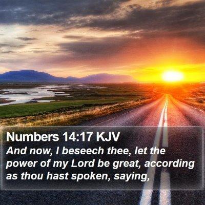 Numbers 14:17 KJV Bible Verse Image