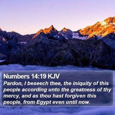 Numbers 14:19 KJV Bible Verse Image
