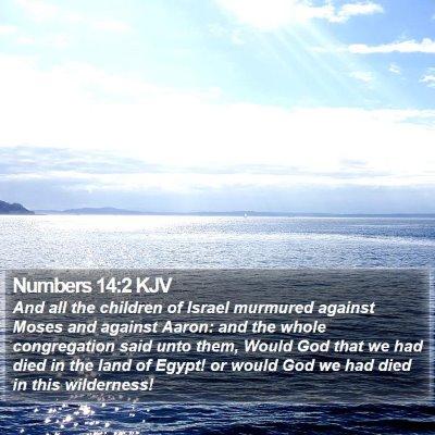 Numbers 14:2 KJV Bible Verse Image
