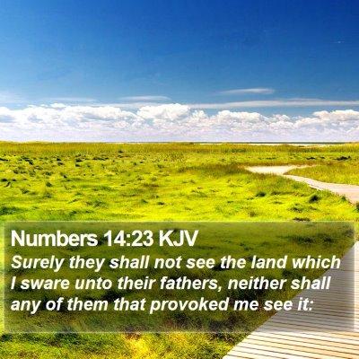 Numbers 14:23 KJV Bible Verse Image