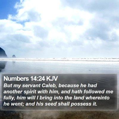 Numbers 14:24 KJV Bible Verse Image