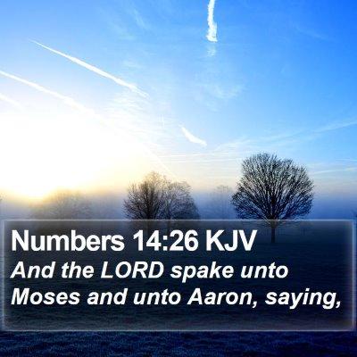Numbers 14:26 KJV Bible Verse Image