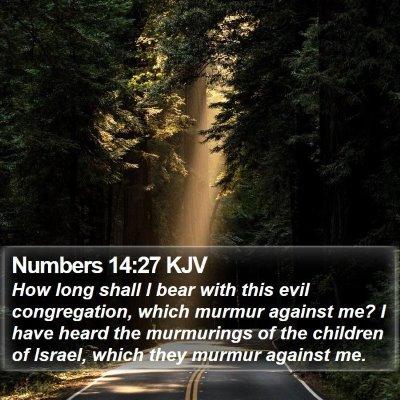 Numbers 14:27 KJV Bible Verse Image