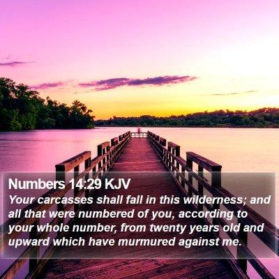 Numbers 14:29 KJV Bible Verse Image
