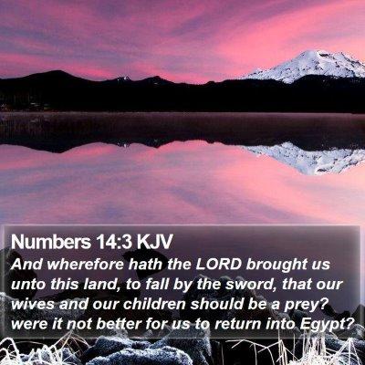 Numbers 14:3 KJV Bible Verse Image