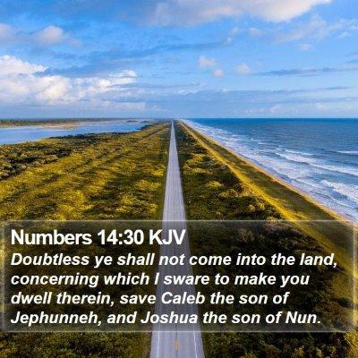 Numbers 14:30 KJV Bible Verse Image