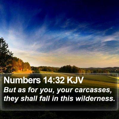 Numbers 14:32 KJV Bible Verse Image