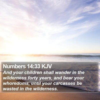 Numbers 14:33 KJV Bible Verse Image