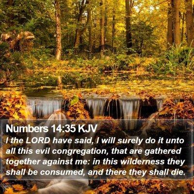 Numbers 14:35 KJV Bible Verse Image