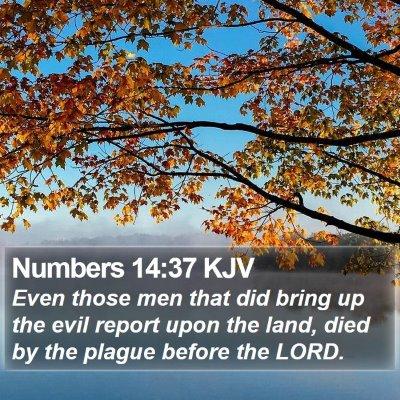 Numbers 14:37 KJV Bible Verse Image