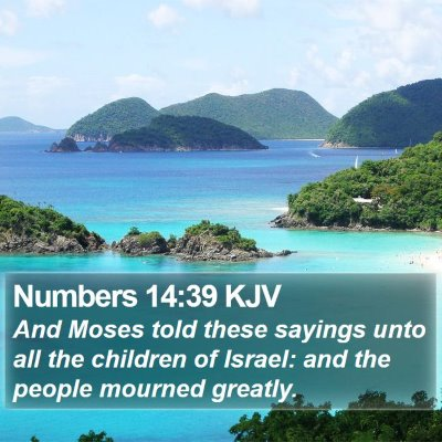 Numbers 14:39 KJV Bible Verse Image