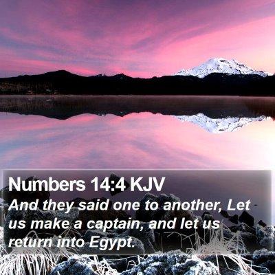 Numbers 14:4 KJV Bible Verse Image
