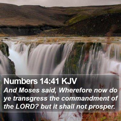 Numbers 14:41 KJV Bible Verse Image