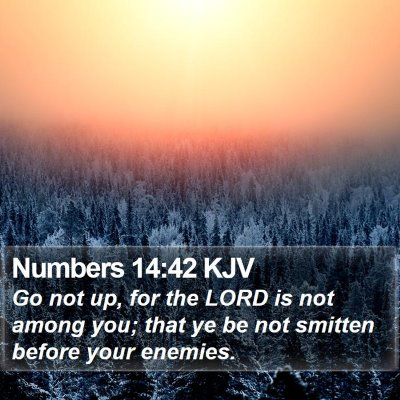 Numbers 14:42 KJV Bible Verse Image