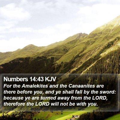 Numbers 14:43 KJV Bible Verse Image