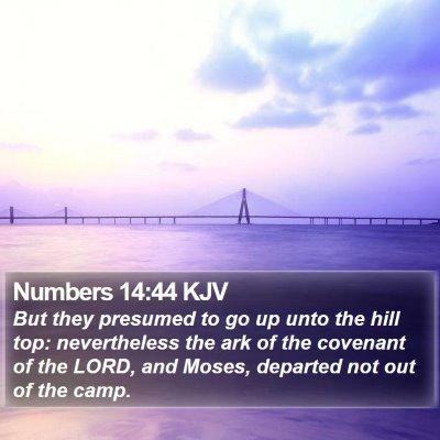 Numbers 14:44 KJV Bible Verse Image