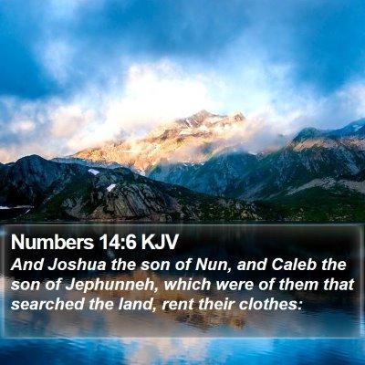 Numbers 14:6 KJV Bible Verse Image