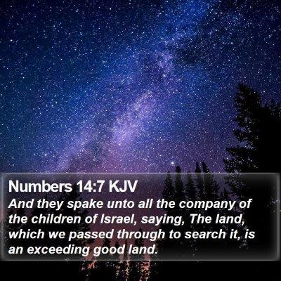 Numbers 14:7 KJV Bible Verse Image