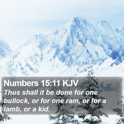 Numbers 15:11 KJV Bible Verse Image