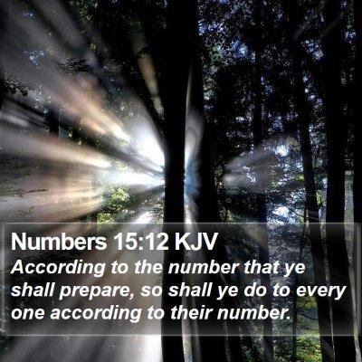 Numbers 15:12 KJV Bible Verse Image