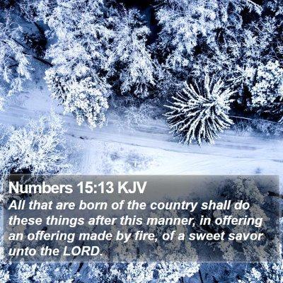 Numbers 15:13 KJV Bible Verse Image