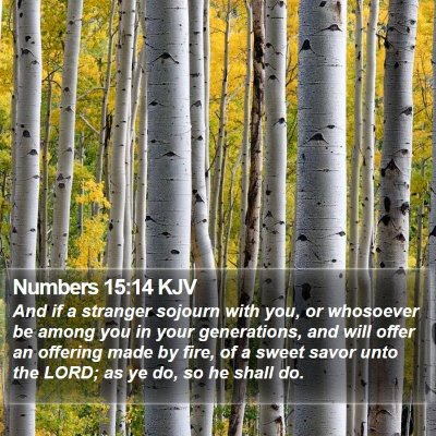 Numbers 15:14 KJV Bible Verse Image