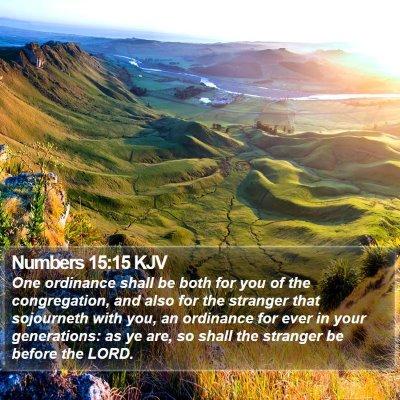 Numbers 15:15 KJV Bible Verse Image