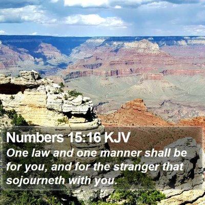 Numbers 15:16 KJV Bible Verse Image