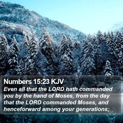 Numbers 15:23 KJV Bible Verse Image