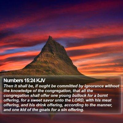 Numbers 15:24 KJV Bible Verse Image