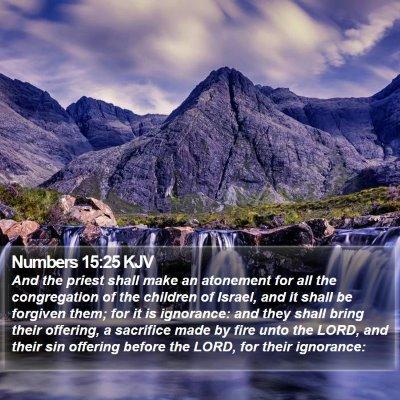 Numbers 15:25 KJV Bible Verse Image