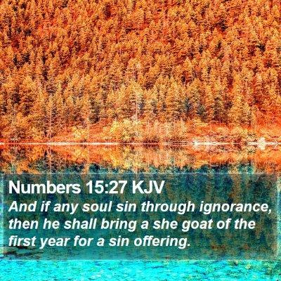 Numbers 15:27 KJV Bible Verse Image