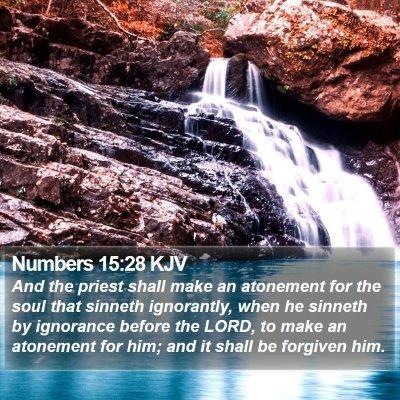 Numbers 15:28 KJV Bible Verse Image