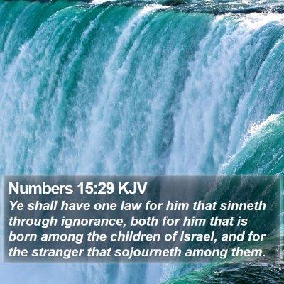 Numbers 15:29 KJV Bible Verse Image