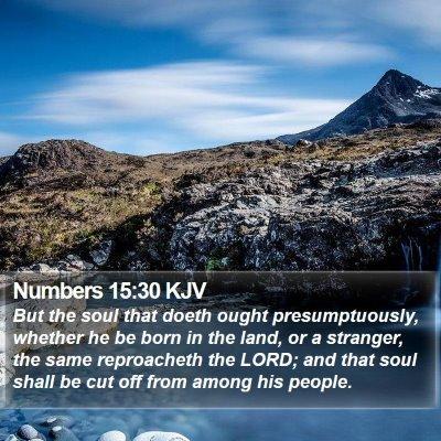Numbers 15:30 KJV Bible Verse Image