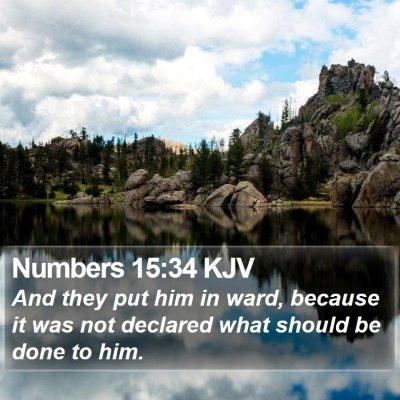Numbers 15:34 KJV Bible Verse Image